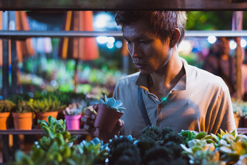 Young Asian man looks at a potted houseplant in his hands surrounded by shelves with indoor succulent plants at a night market. This is Chatuchak Plant Market, Bangkok City, Thailand.