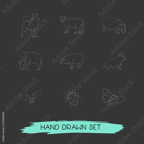 Set Of Zoology Icons Line Style Symbols With Pig Bat Dog And Other
