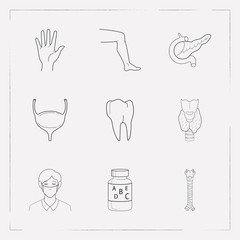 Set of anatomy icons line style symbols with tooth, leg, thyroid and other icons for your web mobile app logo design.
