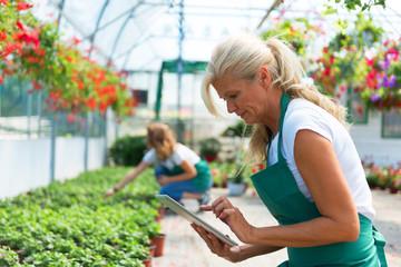Senior florist with digital tablet in greenhouse