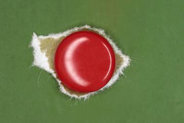 Puntina da disegno rossa su legno verde - particolare