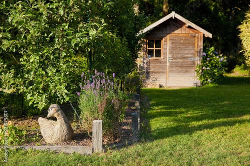 Cabane de jardin, bordure et potager\