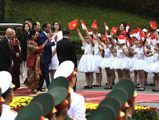President of the Republic of Indonesia Joko Widodo and President of Vietnam Tran Dai Quang review the Vietnamese People's Army honorary delegation in Hanoi