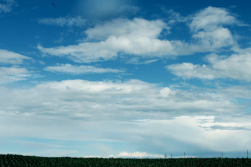 beautiful summer cloudscape/ Spindrift clouds/sky background