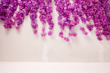 Purple flowers on white wall