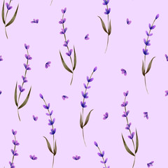 Seamless pattern with hand painted lavender flowers and petals on a purple background