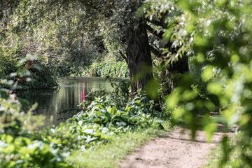 The Stort river