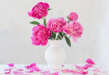 pink peonies in vase on  white  background