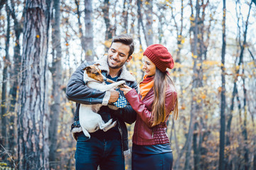 Junges Paar geht mit dem Hund in Herbst Wald spazieren
