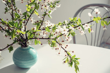 Branch of a flowering tree stands in a round turquoise vase