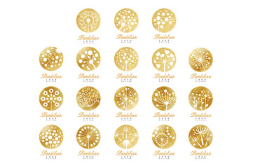 Dandelion logo template set, beautiful nature badge for your own design vector Illustrations