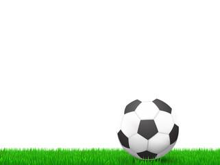 soccer ball  on grass over white