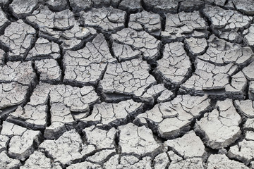 a very dry cracked soil on a field