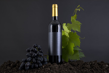 Wine Bottle with grapes in a black background