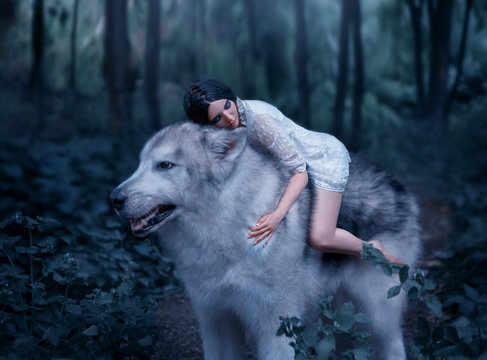 A fragile girl riding a wolf, like Princess Mononoke. Sleeping Beauty. Alaskan Malamute is like a wild wolf. The background is a fairy-tale forest in cool colors