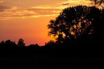 Golden sunset with plane