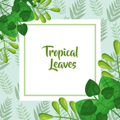 tropical leaves template fashion green design