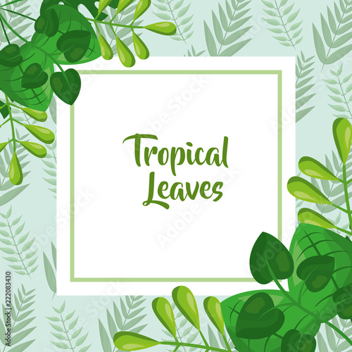 tropical leaves template fashion green design stock image and
