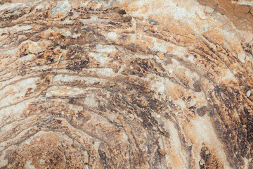 Photo of texture sandstone