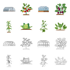 Isolated object of greenhous and plant sign. Collection of greenhous and garden vector icon for stock.