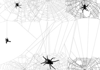 four black spiders in different web illustration