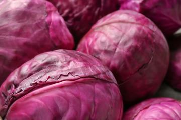 Ripe red cabbage, closeup