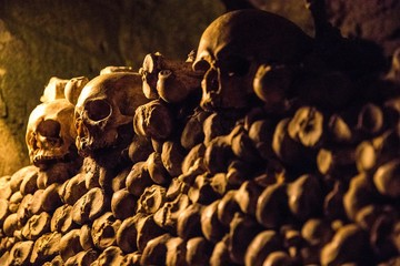 Skulls and bones in the Catacombs of Paris, France