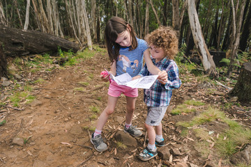 Young kids reading a map on a bush trail, children reading a map in the woods