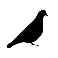 Bird icon, silhouette, logo on white background
