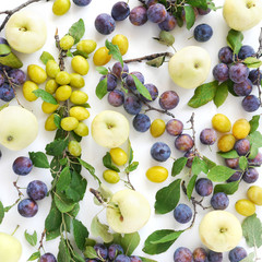 Fototapete - Food background. Composition of plums and apples, top view, flat lay. Fresh fruit pattern.