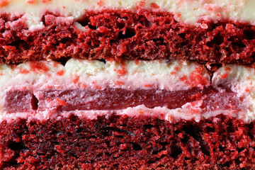 Piece of delicious cake, closeup