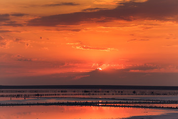 beautiful sunset over lake with wooden piles of salt plant.