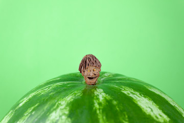 Small funny smiling little man on a big yummy watermelon. Green background, talisman made from bone peach