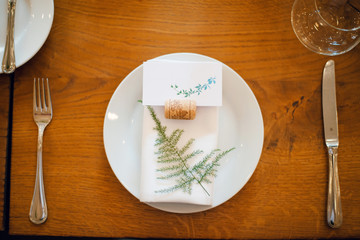Top view of rustic wedding table setting with green plants on wooden table.