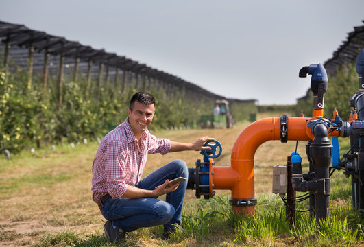 Farmer with tablet beside irrigation pipes in apple orchard