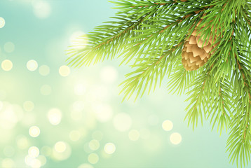 Realistic fir-tree branch with pinecone illustration