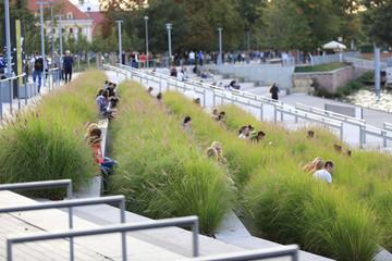 Obraz Młodzi ludzie w zielonej trawie w zatoce rzeki Odra we Wrocławiu. - fototapety do salonu