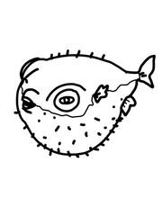 cartoon illustration  Puffer fish drawing