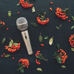 Microphone flat lay top view