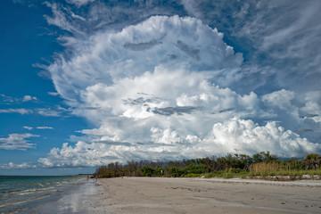 Cumulus cloud on the coast