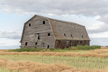 big rustic barn in a swathed field
