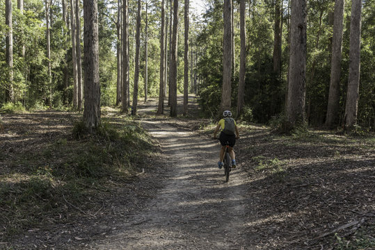 Female, baby boomer, cyclist riding on a path in the Amamoor State Forest Park, Queensland, Australia.