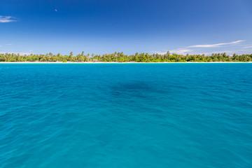 Photo Blinds Natuur Palm tree leaves on beautiful beach and sun shining