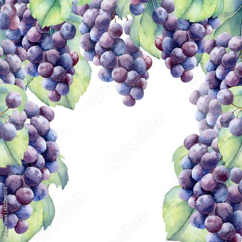 Fototapete watercolor fruit grapes branch
