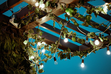 Green wooden roof is wrapped in beautiful bright lights and light bulbs. Pleasant atmosphere of the night lounge. Ideal background for branding, text and logo of a bar or pub. Concept of a leisure