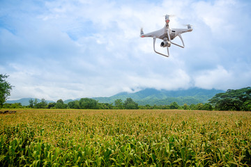 UAV drone copter flying with digital camera.Drone with high resolution digital camera. Flying camera take a photo and video.The drone with professional camera takes pictures of the corn farm.