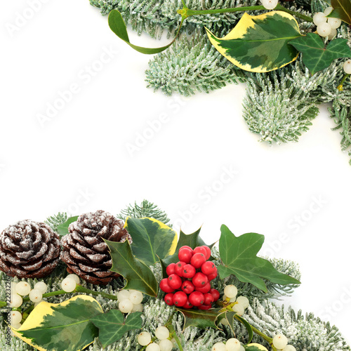 2a6aac812920 Winter and Christmas background border with holly berries, snow covered  spruce pine, ivy, pine cones and mistletoe on white background with copy  space.