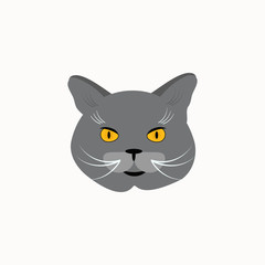 Cat breed British Shorthair face. Vector illustration.