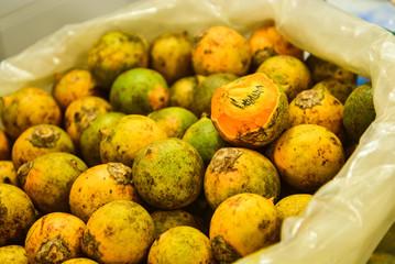 tucumã à venda no mercado central de Manaus