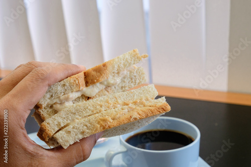One Hand holding Sandwich Salad white bread with background Hot